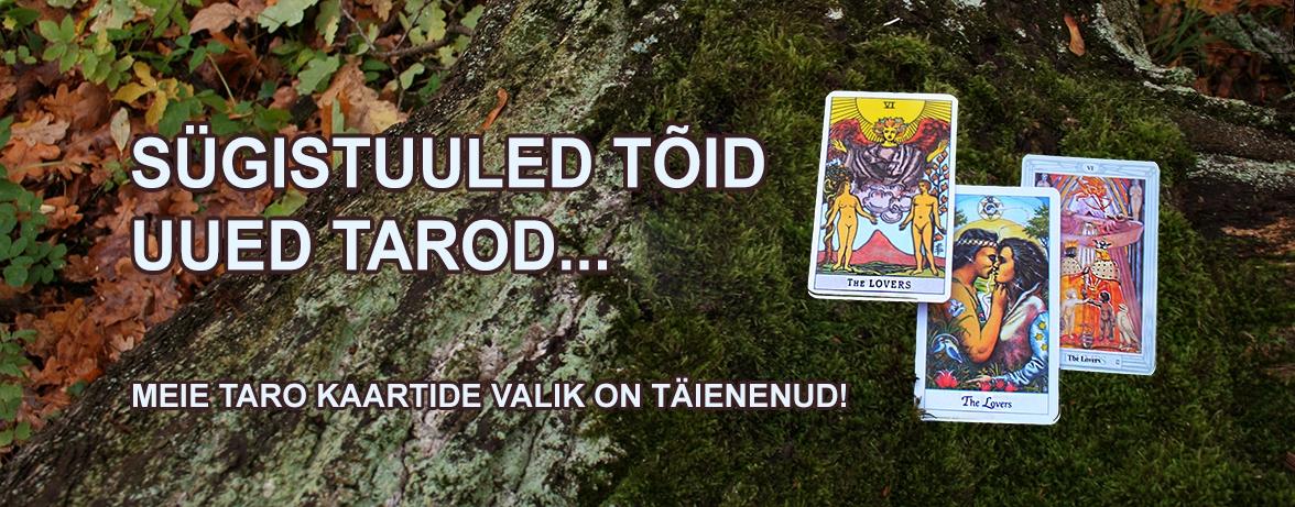 Taro kaardid sügise tausta peal